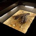 """Oświetlenie wystawy """"Bursztynowe konteksty"""", projekt oświetlenia: Alfa-Zeta, zdjęcia: Marcin Krysiński"""