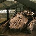 Midtsonderjyllands Museum, Gram, Denmark<br />&copy; Roblon A/S