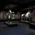 The Turkish Chamber, Dresden Castle, Germany<br />Projekt oświetlenia i zdjęcia: Heinz Werner Hellweg dla Zumtobel